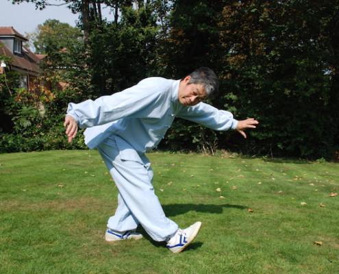 Wild Goose Qigong with Master Tse